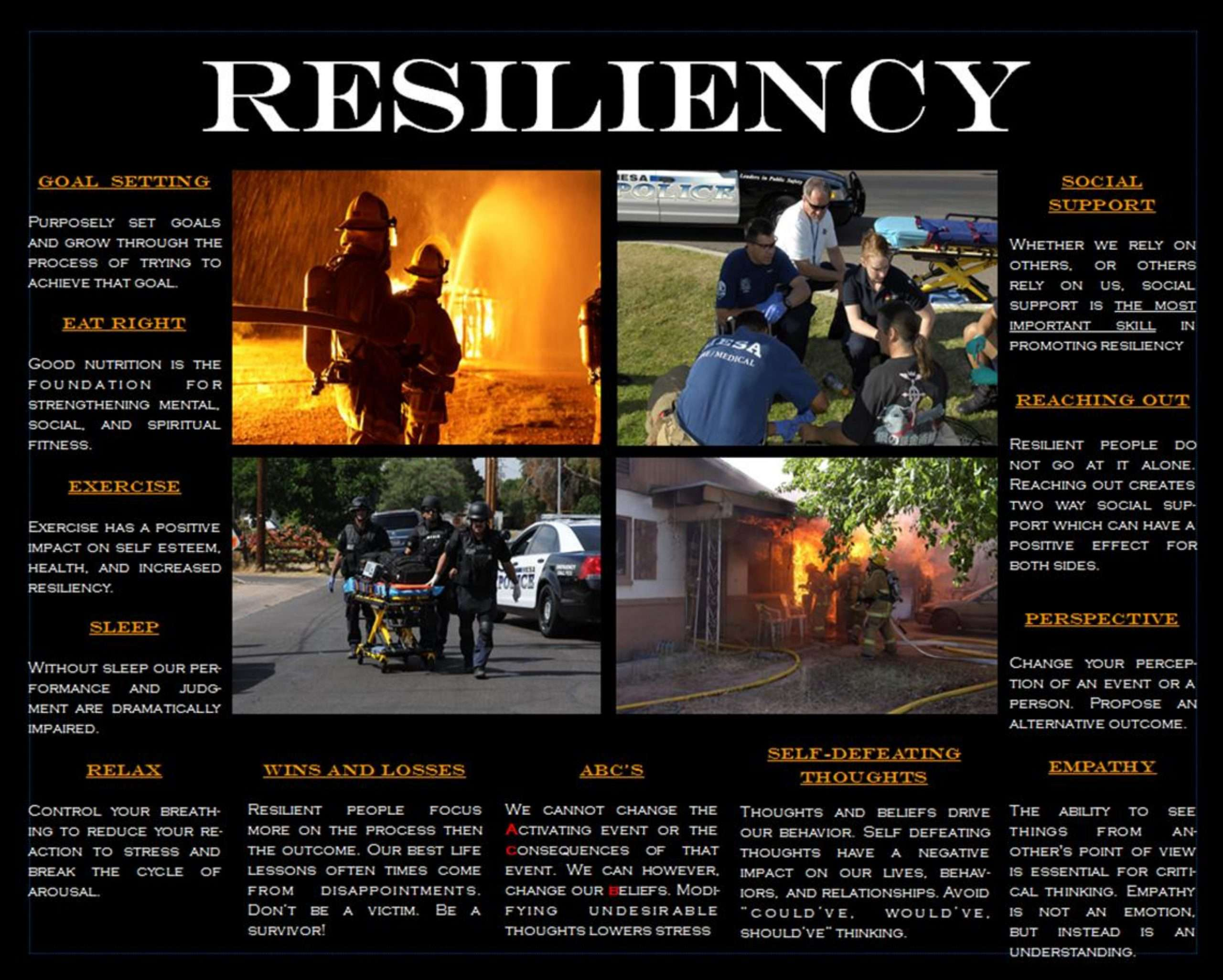 Resiliency Poster